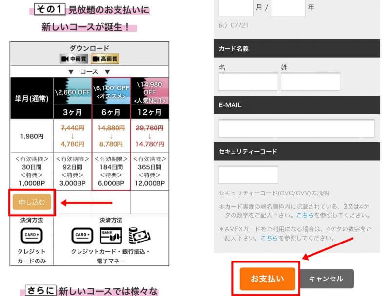 AVVRの支払い申し込み画面